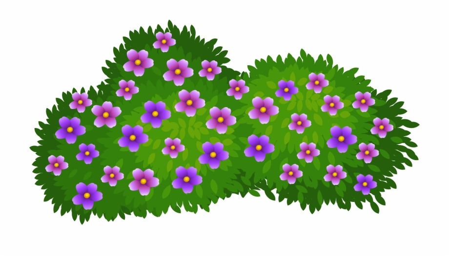 Flowering shrub clipart graphic freeuse Flower Bushes Clipart - Flower Bush Clipart Free PNG Images ... graphic freeuse