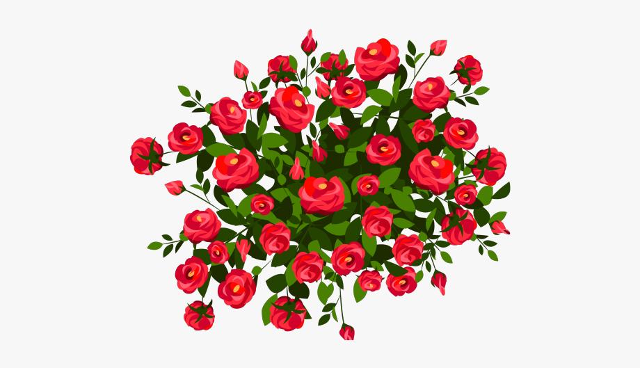 Flowering shrub clipart freeuse Rose Bush Clipart Bush Grass - Vector Flowers Bush Png #2610960 ... freeuse
