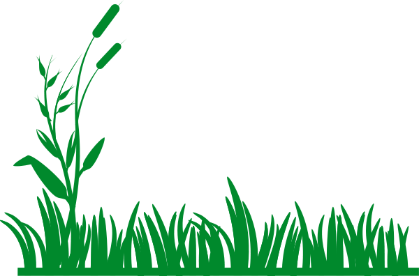 Flowers and grass clipart