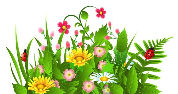 Flowers and grass clipart vector royalty free flower clipart vector royalty free