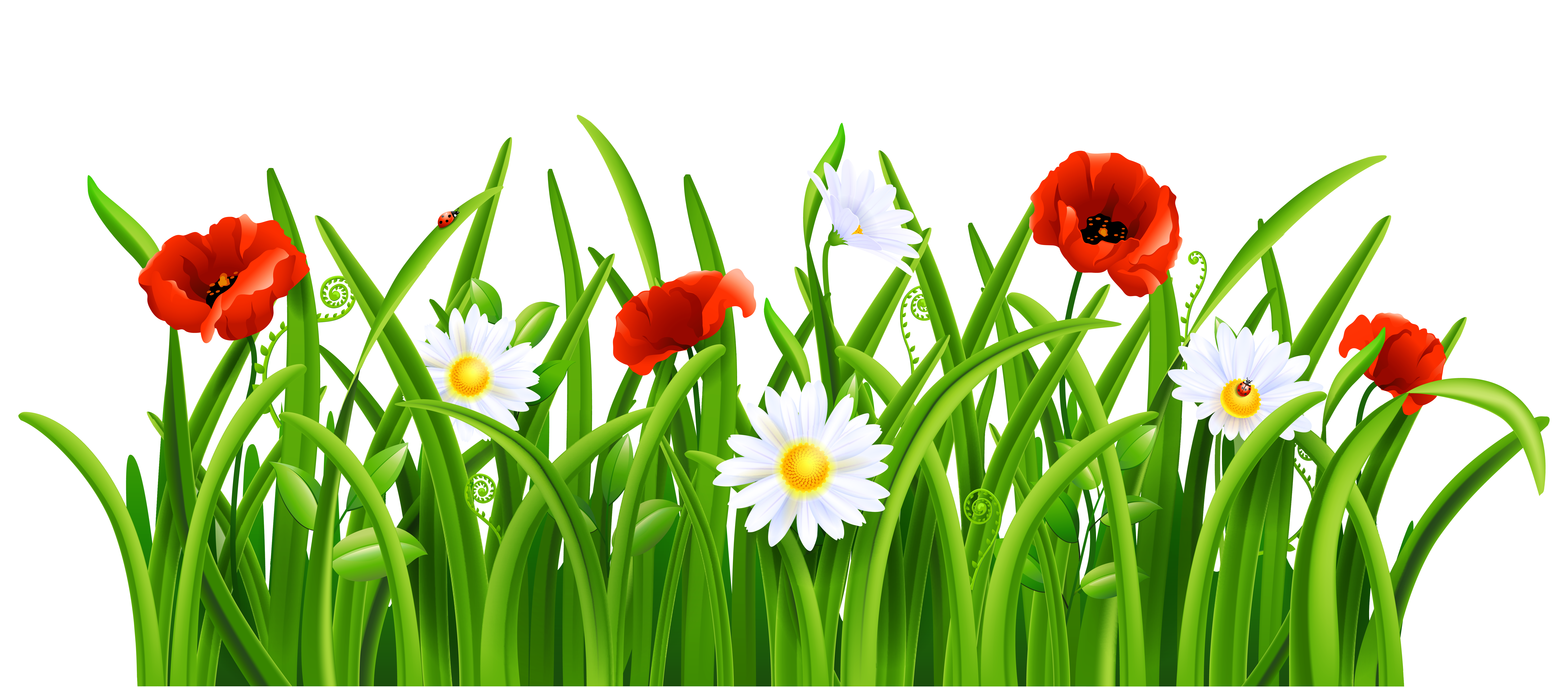 Flowers and grass clipart jpg royalty free library Flowers and grass clipart - ClipartFest jpg royalty free library