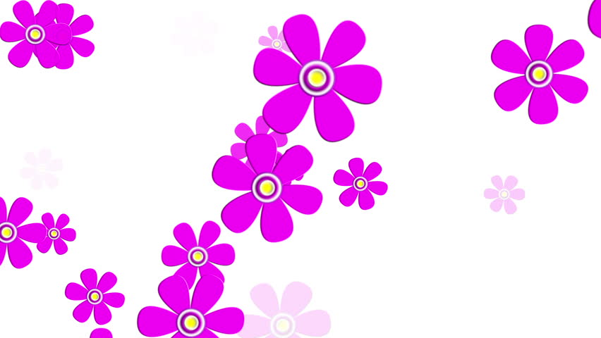 Flowers animation images vector royalty free library Flying Spring Flowers Animation Stock Footage Video 3482063 ... vector royalty free library