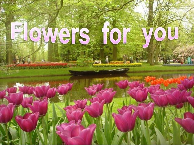 Flowers for you images image Flowers for you image