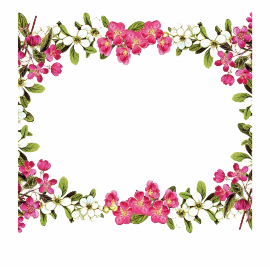 Flowers frame clipart banner royalty free Flower Border Png Flowers Borders Png Transparent Flowers - Frame ... banner royalty free