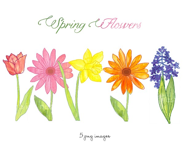 Flowers free clipart pictures png Spring Flowers Clip Art Free & Spring Flowers Clip Art Clip Art ... png