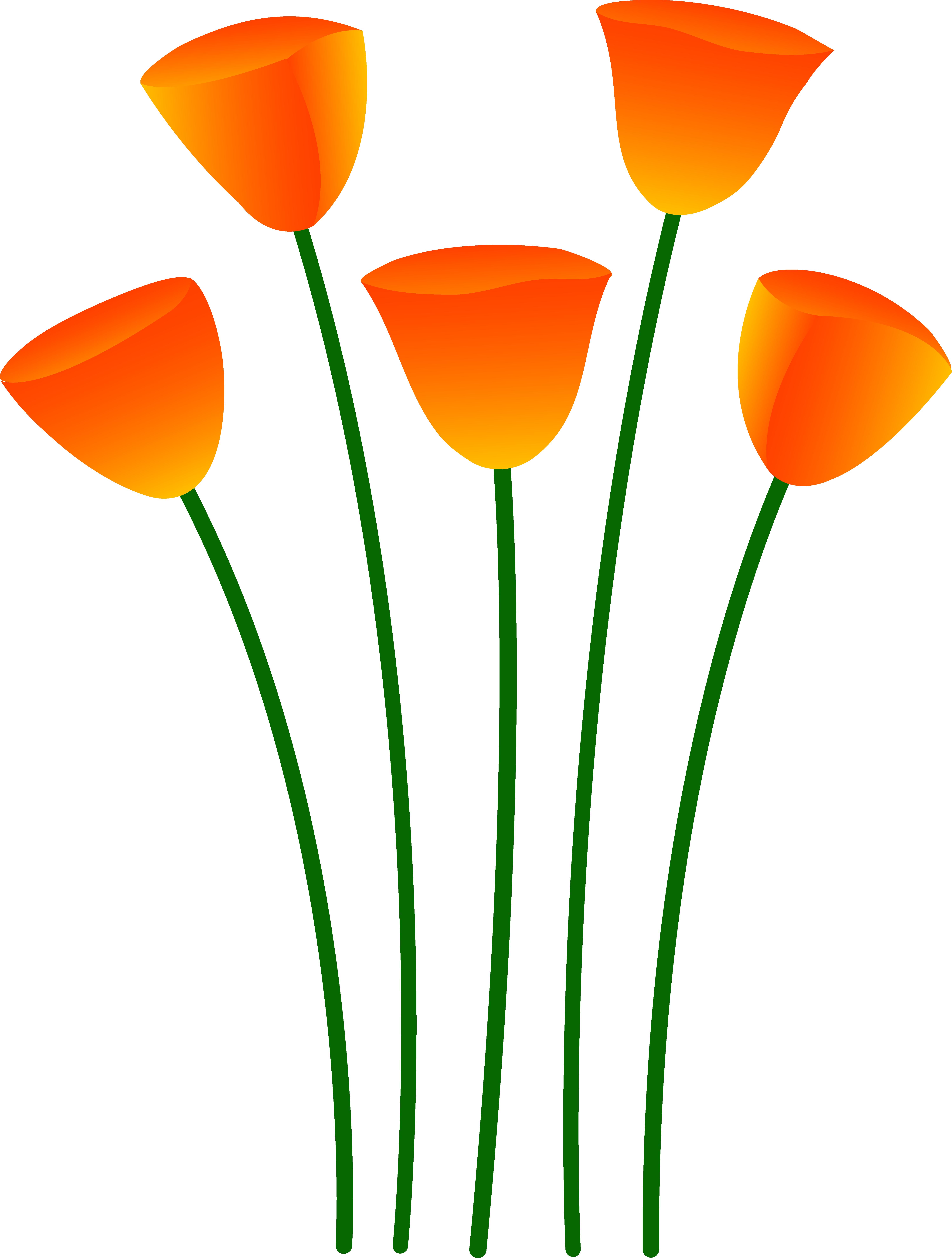 Poppy flower clipart image free library Orange Flower Clipart | Free Download Clip Art | Free Clip Art ... image free library