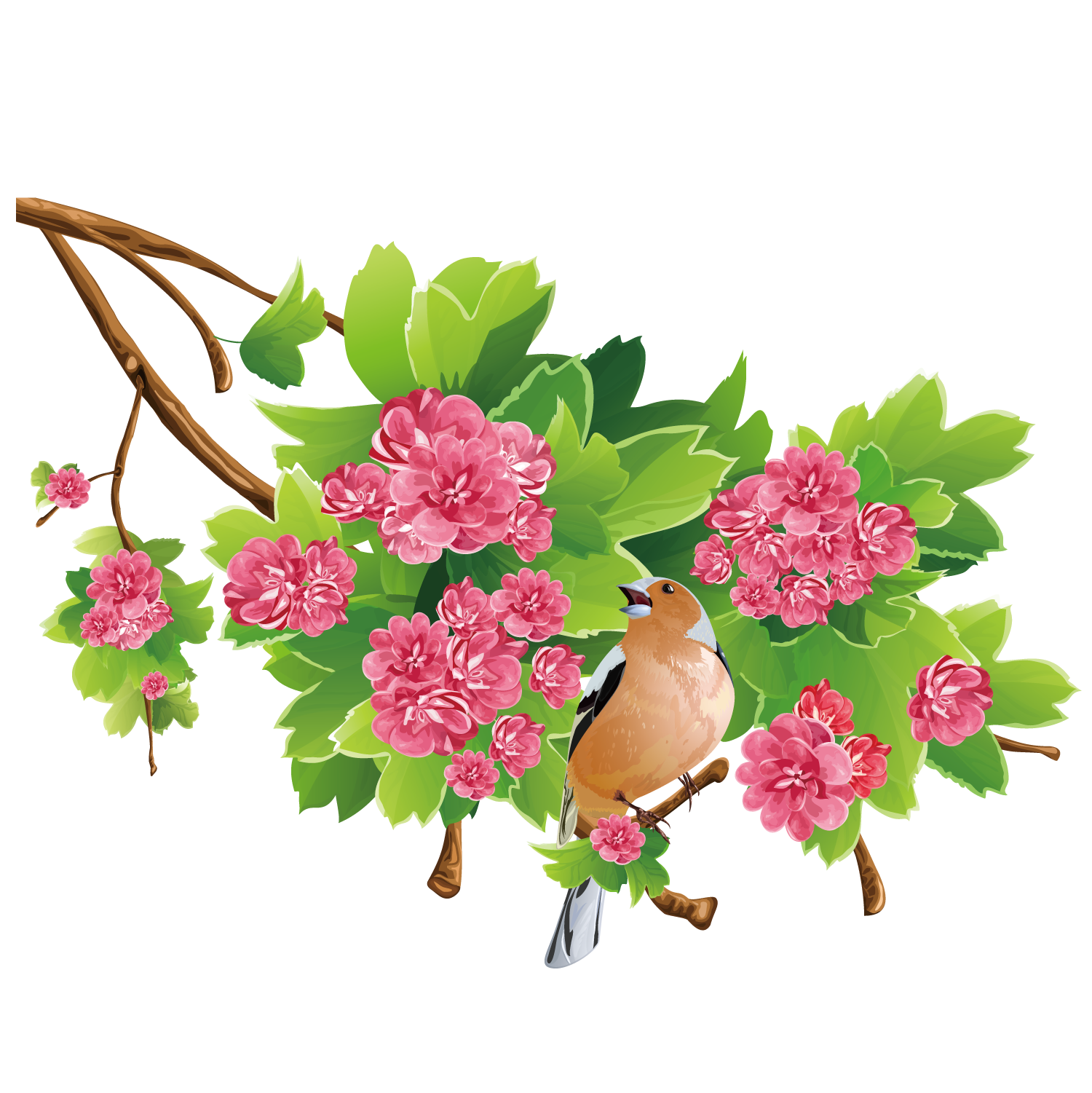 Flowers free image picture free Flower Free content Clip art - Fine rose tree 1500*1501 transprent ... picture free
