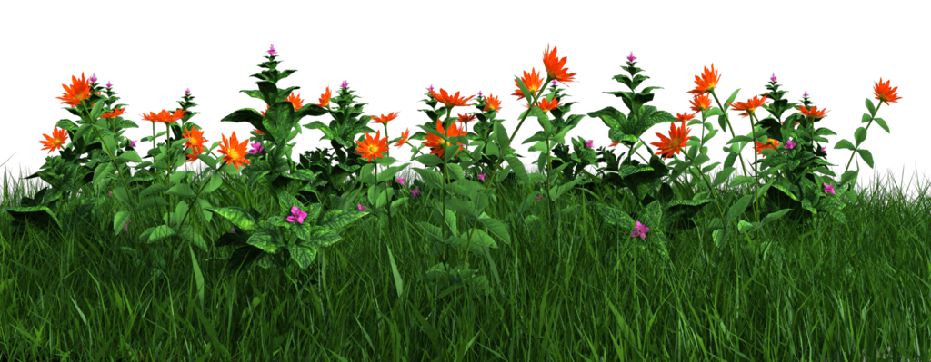 Photos flowers free vector free stock Free PNG: Grass and Flowers by ArtReferenceSource on DeviantArt vector free stock
