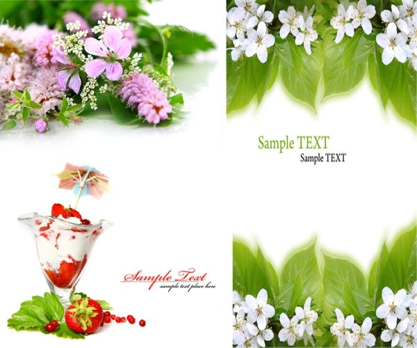 Flowers image free download graphic free download Flower images free stock photos download (10,902 Free stock photos ... graphic free download