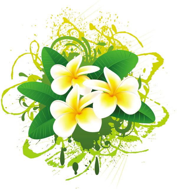 Flowers photos free clip art royalty free stock flowers bloom free vector 01 - Vector Flower free download clip art royalty free stock