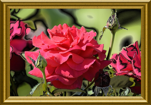 Flowers photos free download clip art free library Red rose flowers free stock photos download (16,156 Free stock ... clip art free library