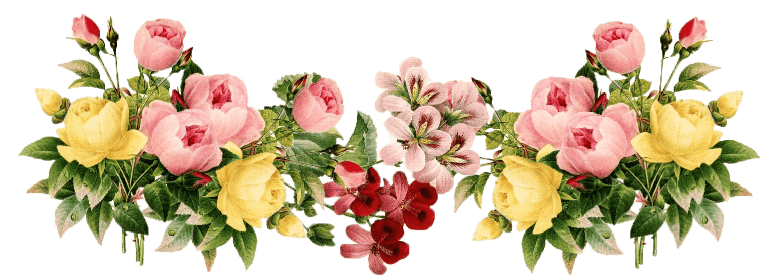 Flower group clipart download Flowers Vintage Group transparent PNG - StickPNG download