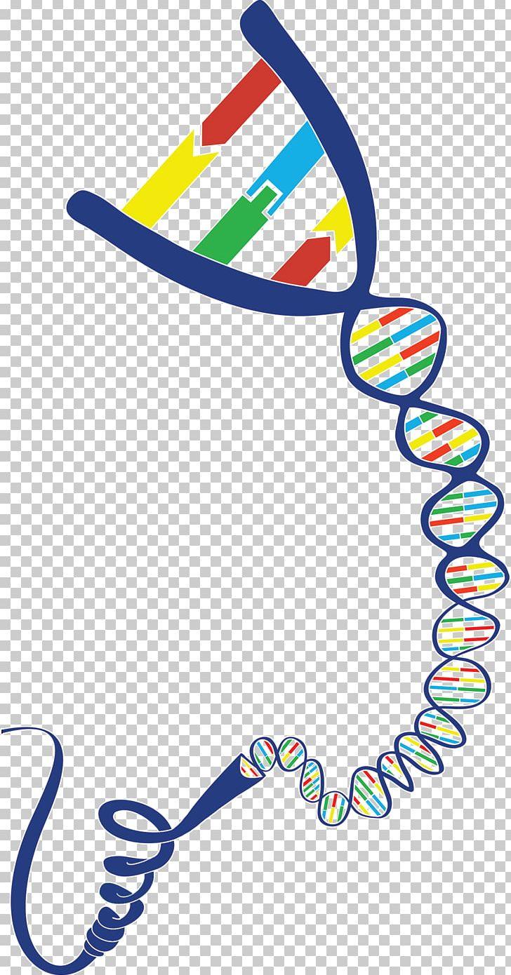 Fluor clipart clip art library download DNA Geneious Gene-Ius PNG, Clipart, Alexa Fluor, Area, Artwork, Com ... clip art library download