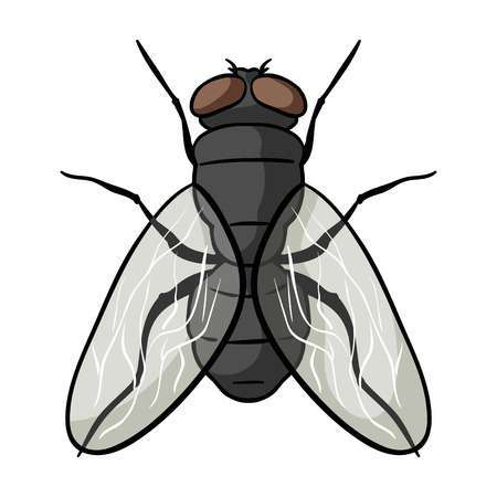 Fly pictures clipart graphic library library House fly clipart 5 » Clipart Portal graphic library library