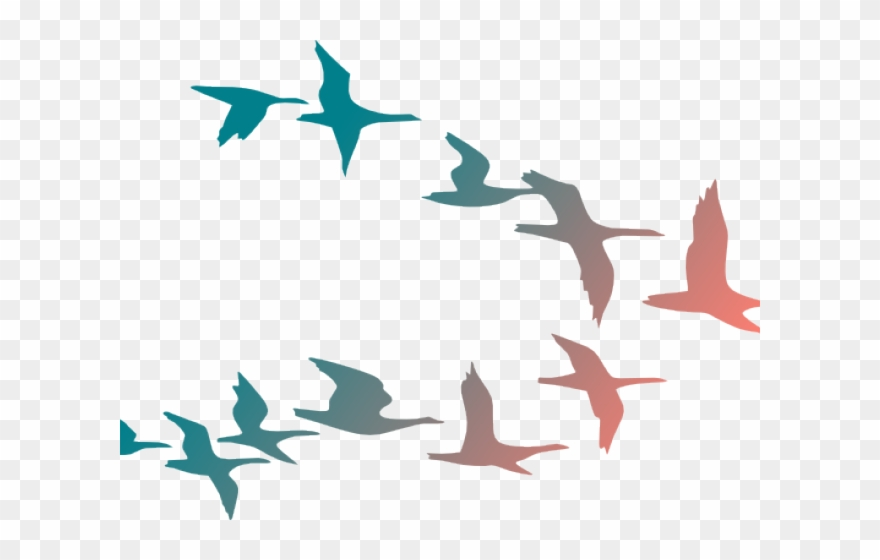 Flying birds clipart image royalty free library Flying Birds Clipart - Flock Of Birds Cartoon - Png Download ... image royalty free library