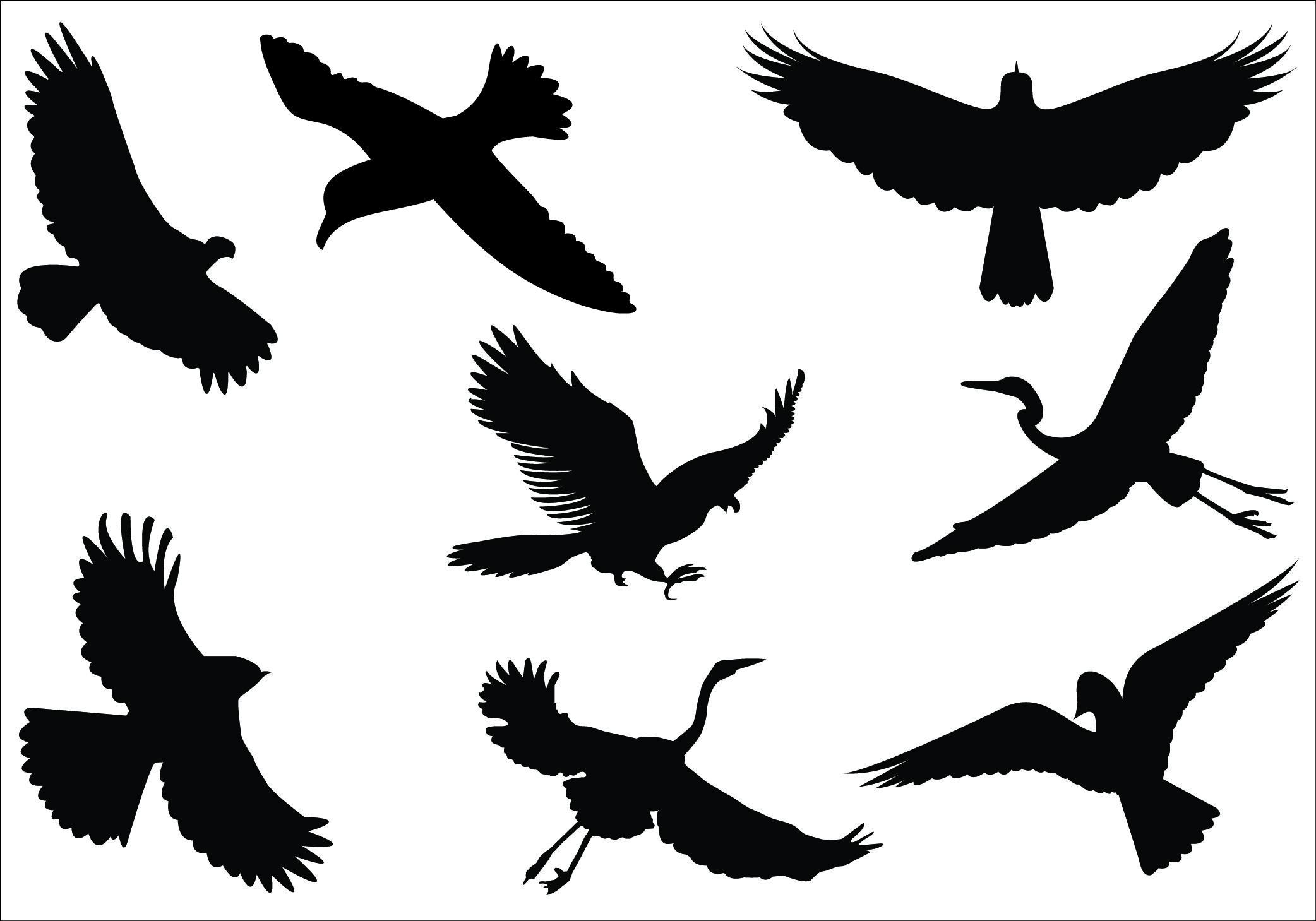Flying birds clipart image download fly birds clipart - Google 搜尋   ideborde evt osv image download