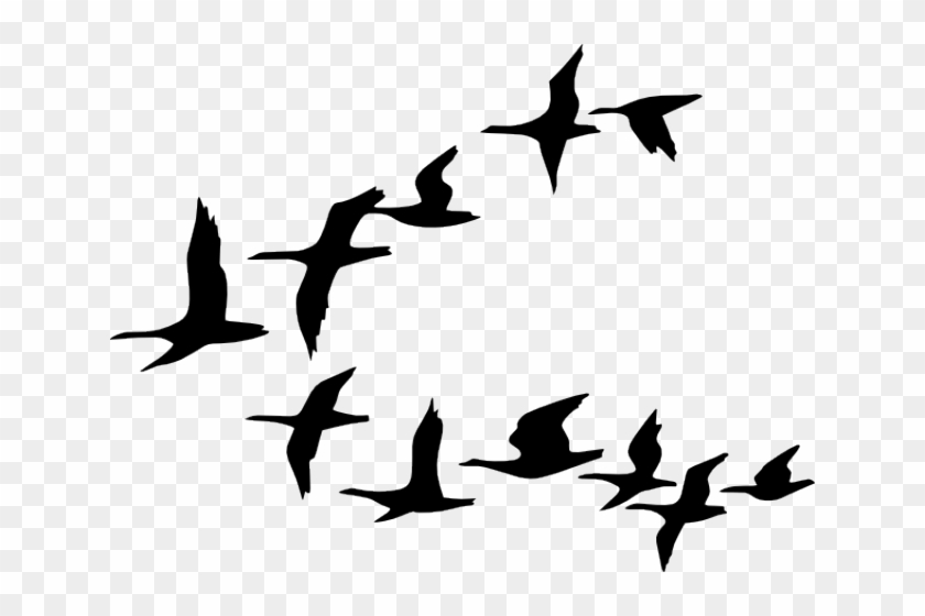 Flying birds clipart clip black and white download Flying Birds Clipart, HD Png Download - 640x480(#2974275) - PngFind clip black and white download