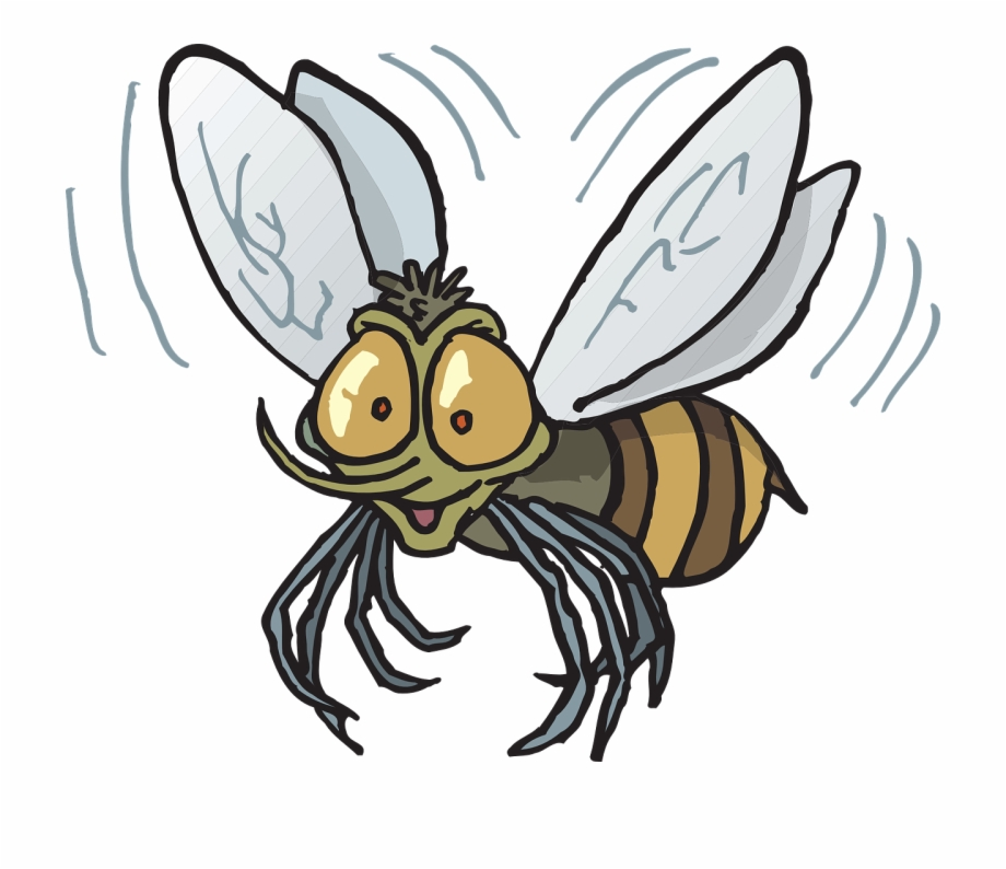 Flying bugs clipart freeuse library Bee Flying Insect Buzzing Fly Png Image - Mexican Fruit Fly Cartoon ... freeuse library