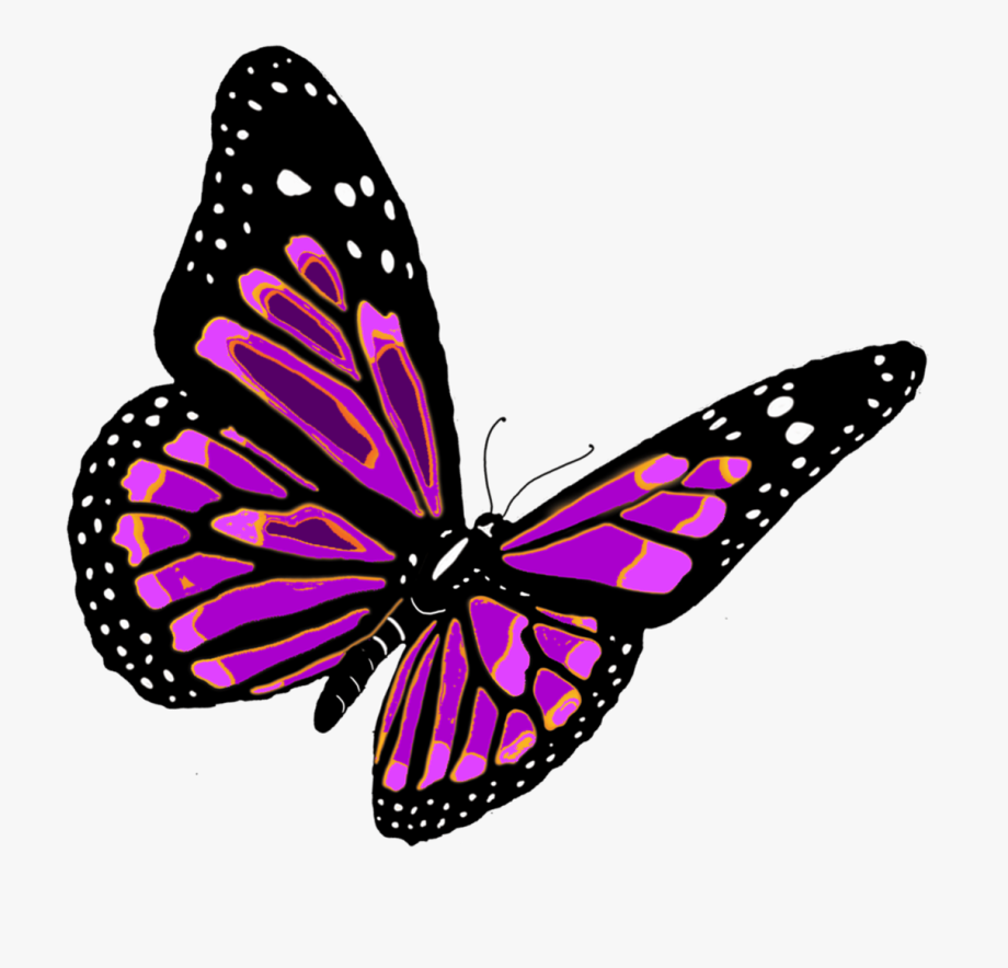 Flying butterfly clipart image picture stock Flying Butterfly Clipart Png Clipartsgram - Png Format Butterfly Png ... picture stock