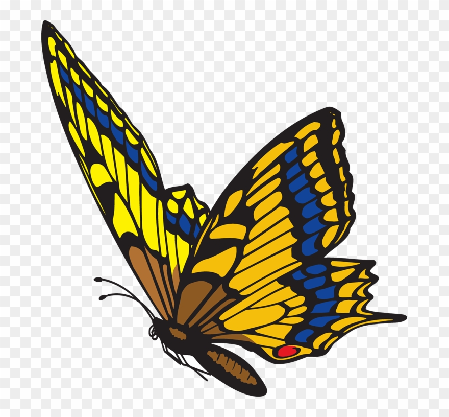 Flying butterfly clipart image clip art royalty free library Diamonsforever31 - Blogspot - - Flying Butterfly Clipart Png ... clip art royalty free library