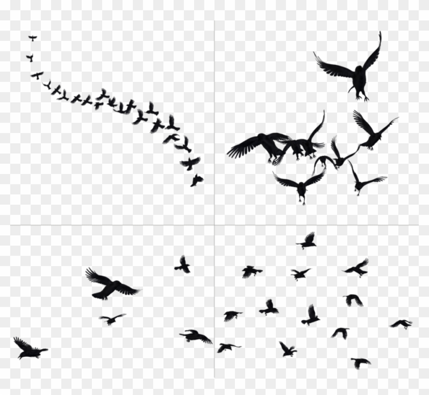 Flying crow clipart clipart library library Flying Crows Png - Crow Png, Transparent Png - 700x611(#2069318 ... clipart library library