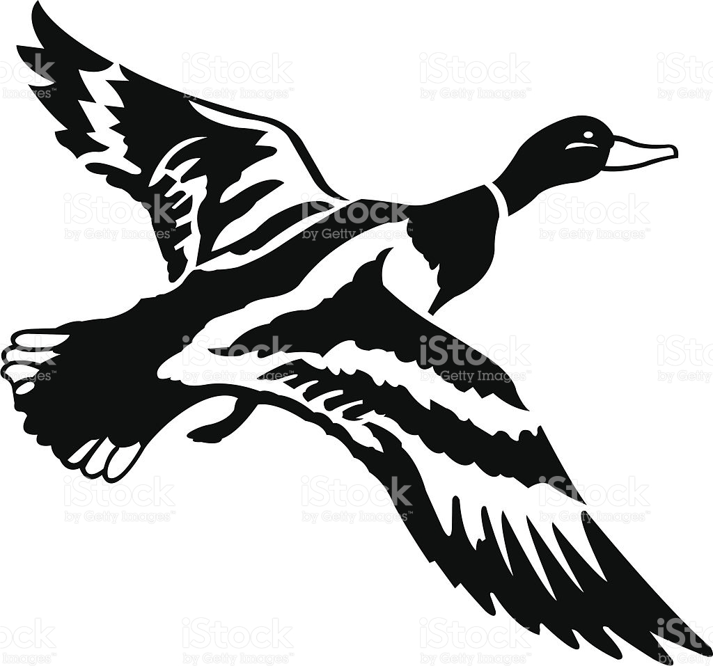 Flying ducks clipart black and white png black and white download Flying Duck Clipart Black And White | Free download best Flying Duck ... png black and white download