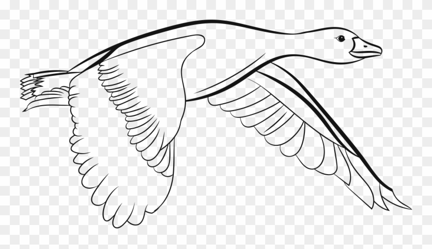 Flying ducks clipart black and white picture royalty free download Big Image - Flying Duck Black And White Clipart - Png Download ... picture royalty free download