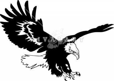 Flying eagle clipart black and white. Soaring panda free