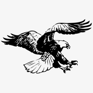 Flying eagle clipart black and white. Free cliparts silhouettes cartoons
