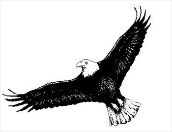 Free images . Flying eagle clipart black and white