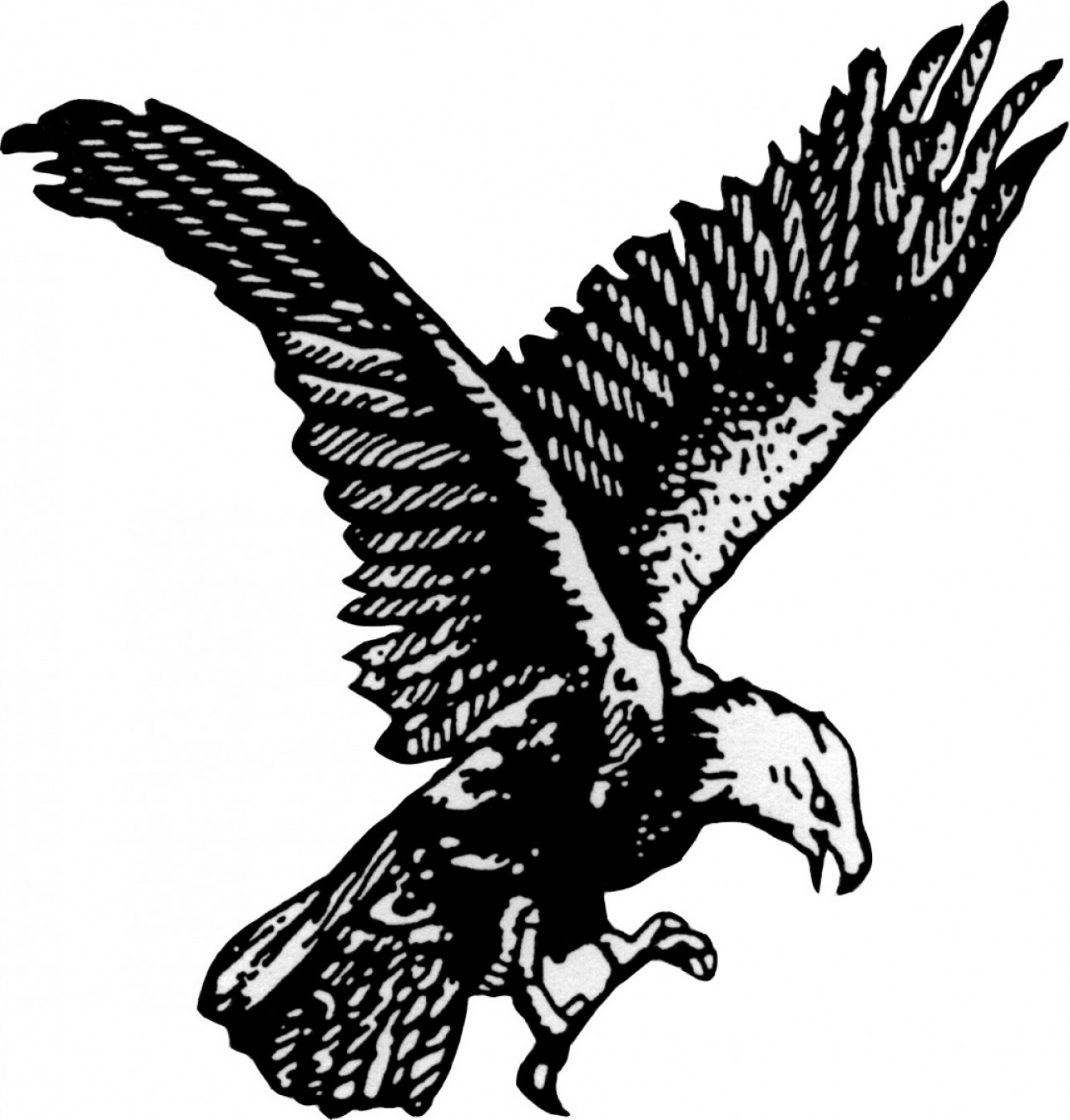Flying eagle clipart black and white. Soaring vector art savoyuptown