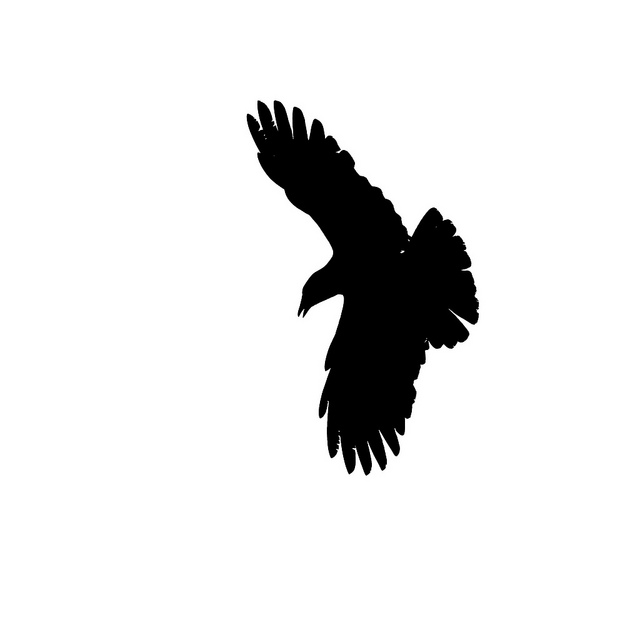 Flying raven clipart clipart transparent Free Raven Silhouette Cliparts, Download Free Clip Art, Free Clip ... clipart transparent