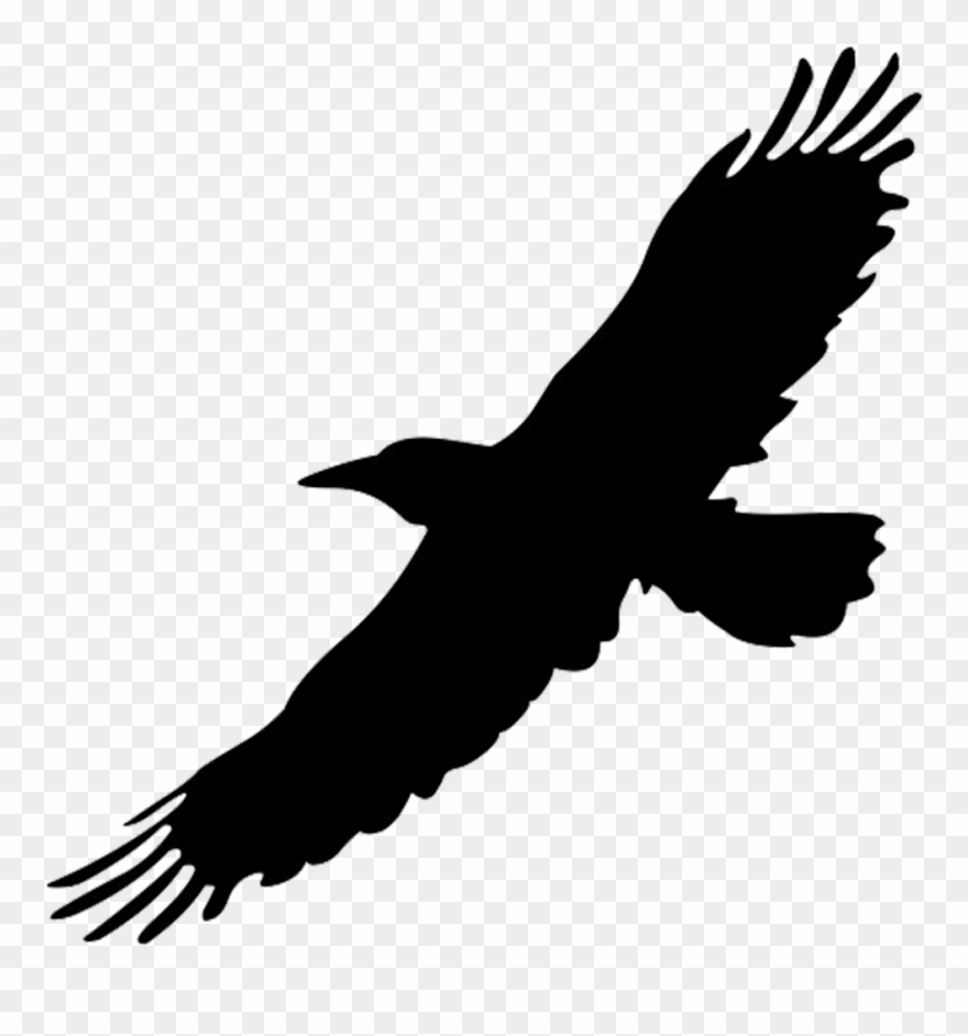 Flying raven clipart vector black and white stock Raven - Flying - Black Flying Bird Png Clipart (#201251) - PinClipart vector black and white stock
