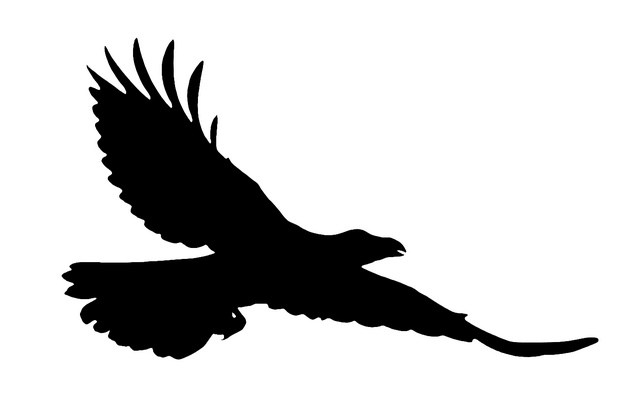 Flying raven clipart royalty free stock Flying raven clipart » Clipart Portal royalty free stock