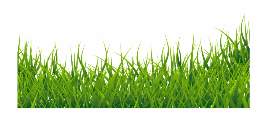 Fodder clipart graphic free Grass Clipart - Clip Art Library graphic free