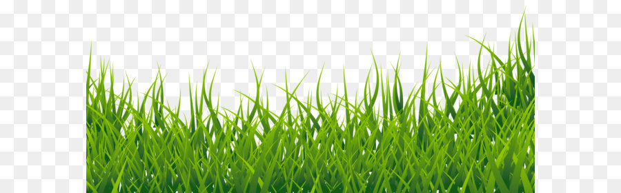 Fodder clipart banner library stock Easter Egg Background png download - 2962*1274 - Free Transparent ... banner library stock