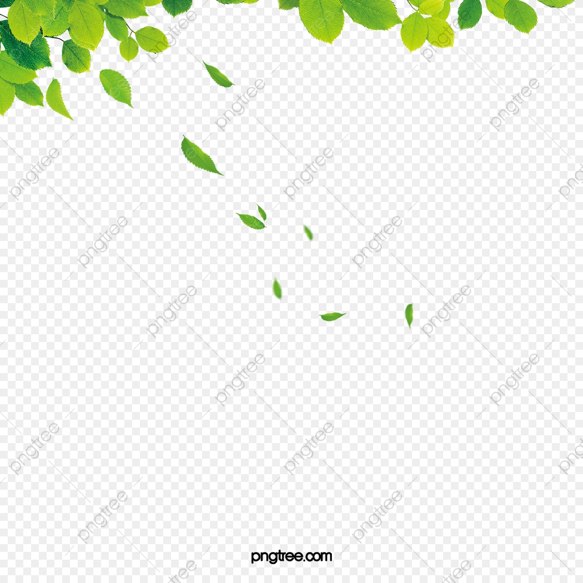 As verde derrubadas arquivo. Folhas caindo clipart