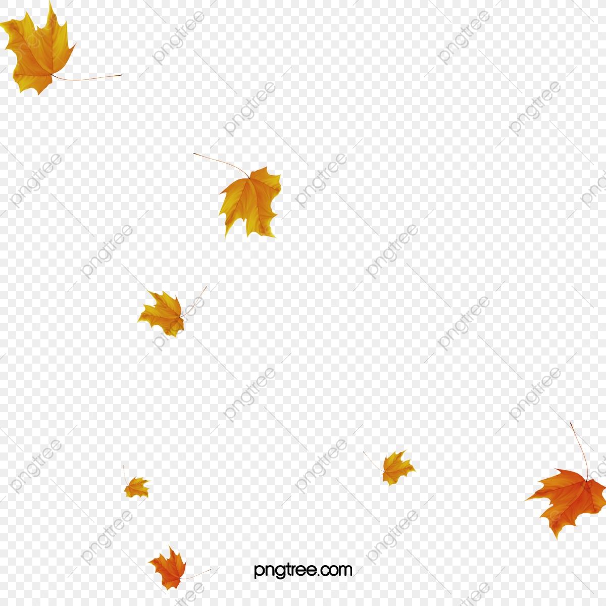 As a cair elemento. Folhas caindo clipart