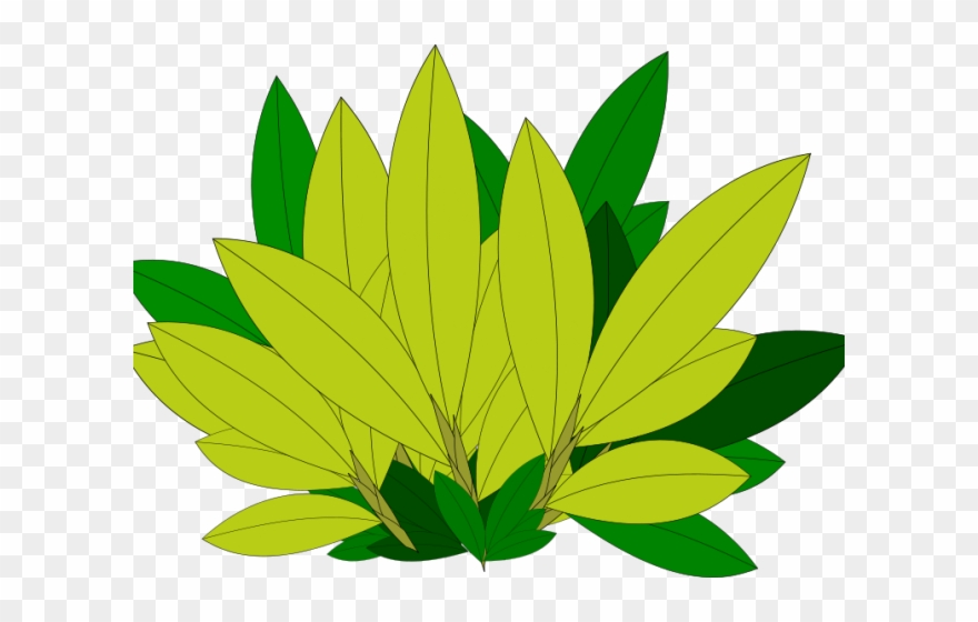Foliage clipart. Greenery bl tter png