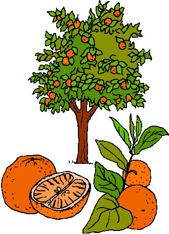 Food from trees clipart transparent library Trees Clip Art transparent library