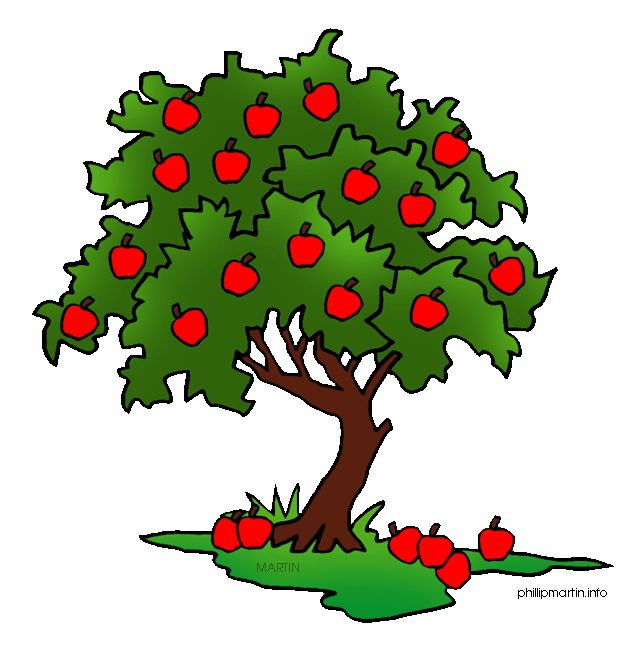 Food from trees clipart jpg transparent stock 17 Best images about CLIP ART TREES FOR ANIMATED POWER POINTS on ... jpg transparent stock