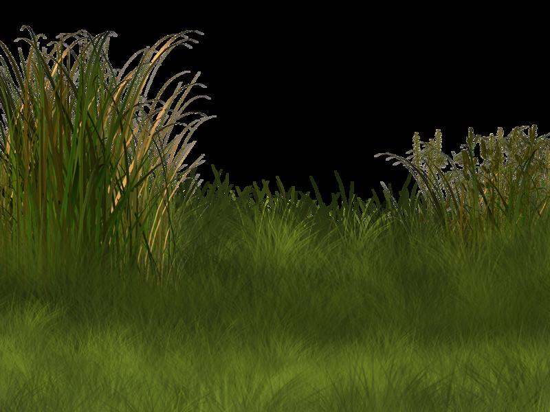 Plant wetland landscape clip. Football field background clipart