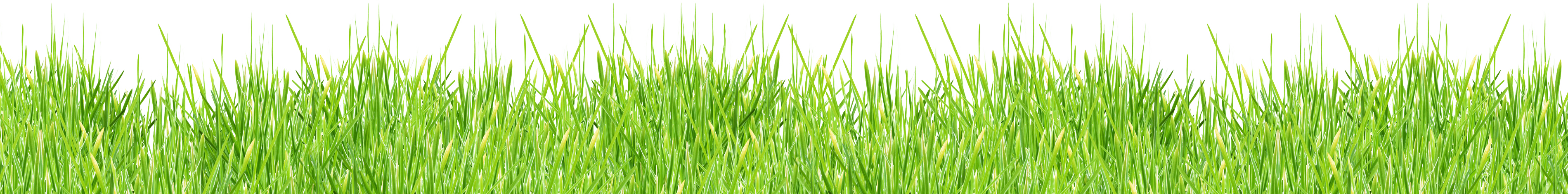 Football field background clipart svg transparent stock Grass PNG images, pictures svg transparent stock