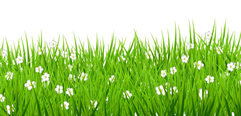 Decorative png picture peoplepng. Football field grass clipart
