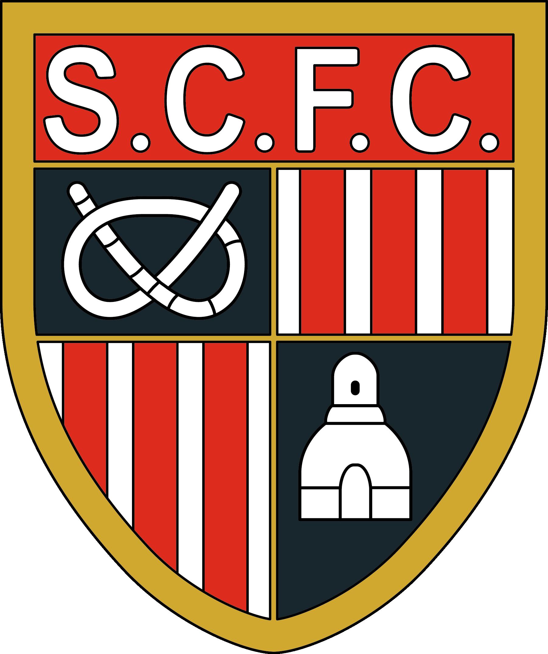 Stoke city fc emblems. Football field ruler clipart