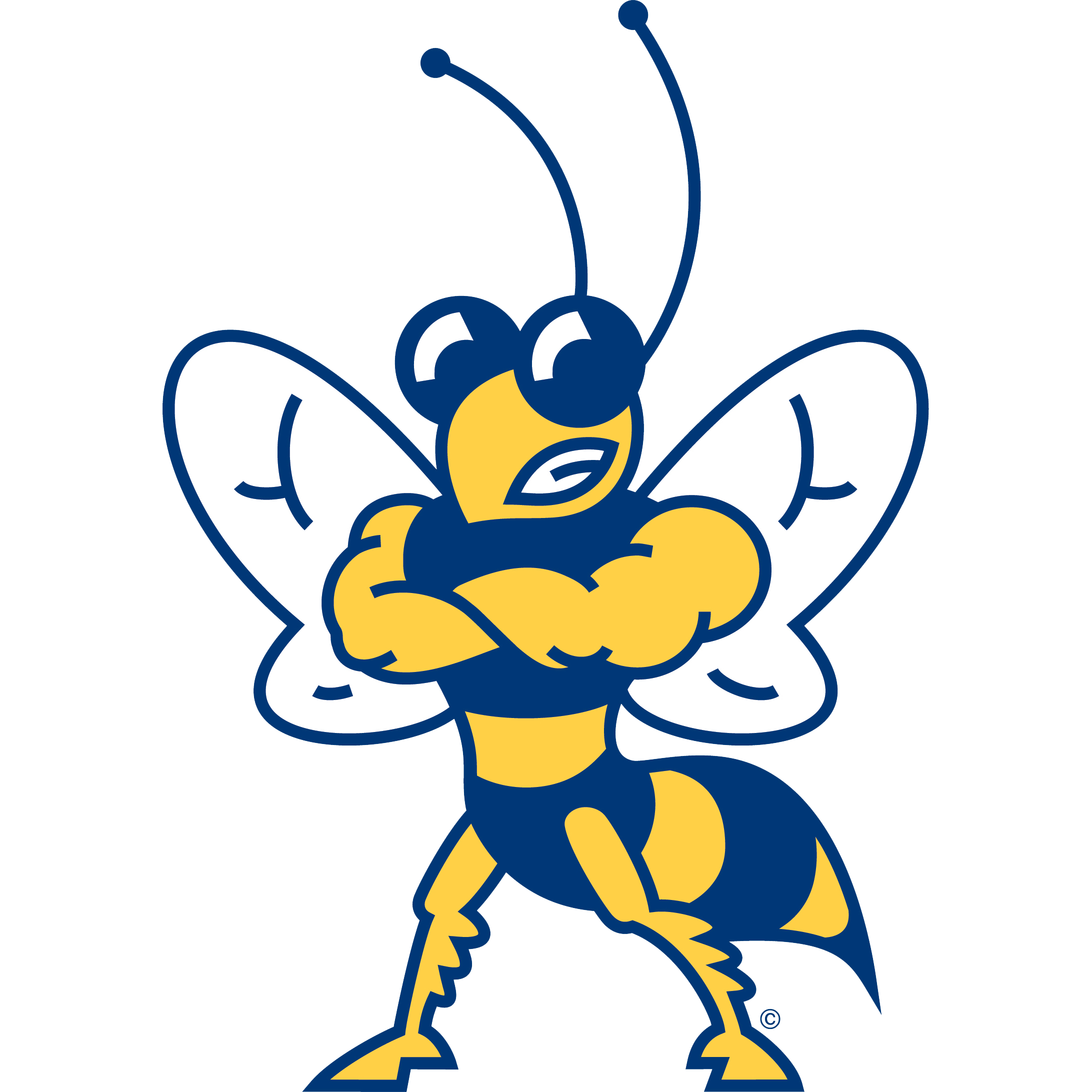 Football snake man clipart freeuse stock Howard Payne Yellow Jackets - 2017 Schedule, Stats & Latest News ... freeuse stock