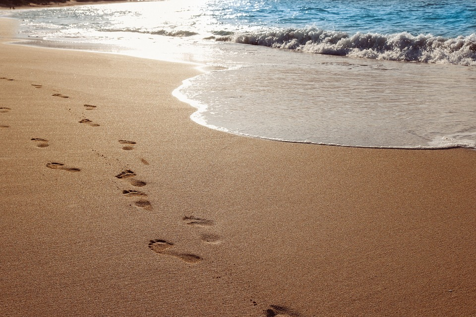 Footprints in the sand clipart free transparent download Footprints In The Sand Clipart (102+ images in Collection) Page 2 transparent download