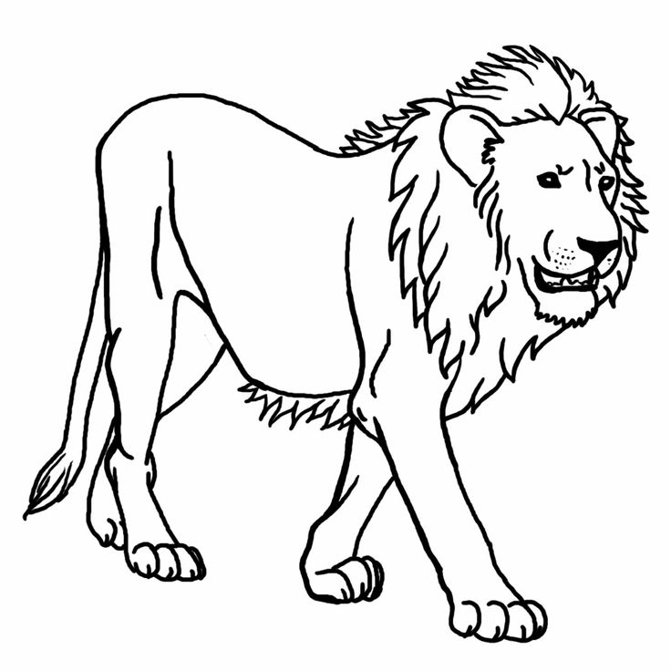 Forest animals black and white clipart graphic Free Jungle Animal Clipart, Download Free Clip Art, Free Clip Art on ... graphic