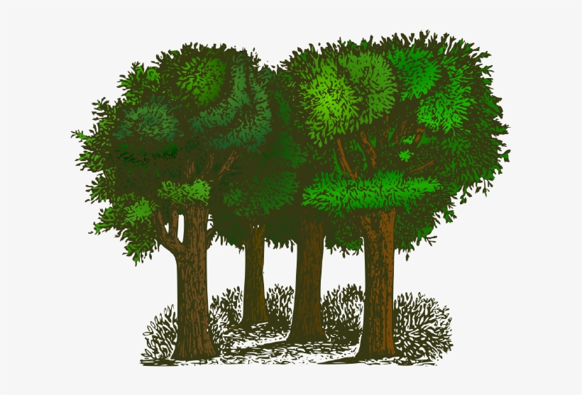 Trees of pride by. Forest cartoon clipart