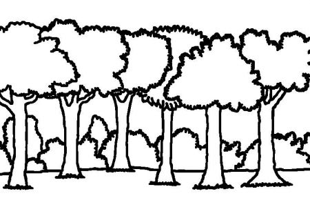 Forest clipart black and white looking up clip art library Forest Clipart Black And White | Free download best Forest Clipart ... clip art library